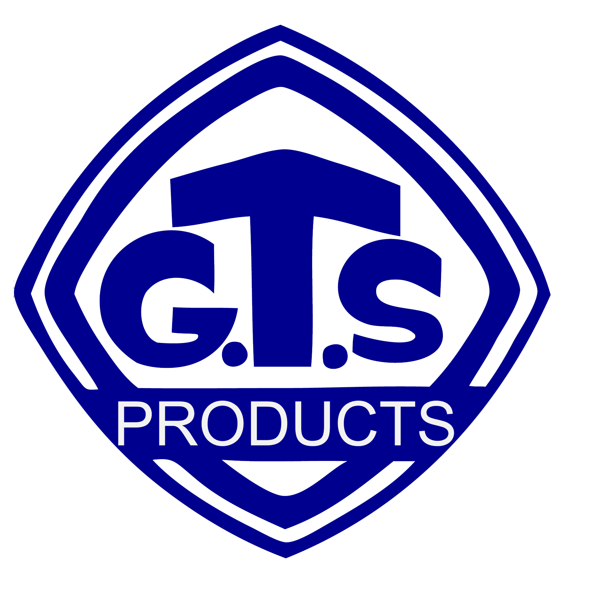 GT surgical (PVT) ltd